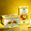 Infusion glacee citron x20
